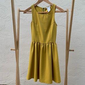 Yellow Ochre Dress | Bar III